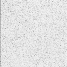 Armstrong Ceilings 24 In X 24 In Kitchen Zone 16 Pack White Smooth 15 16 In Drop Acoustic Panel Ceiling Tiles In The Ceiling Tiles Department At Lowes Com