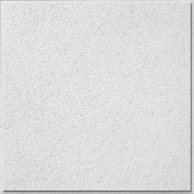 Common 24 In X Actual 23 719 Clic Fine Textured 12 Pack White 15 16 Acoustic Drop Panel Ceiling Tiles