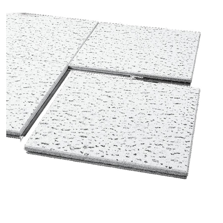 Shop armstrong 12 x 12 natural fissured ceiling panel at lowes armstrong 12 x 12 natural fissured ceiling panel dailygadgetfo Choice Image