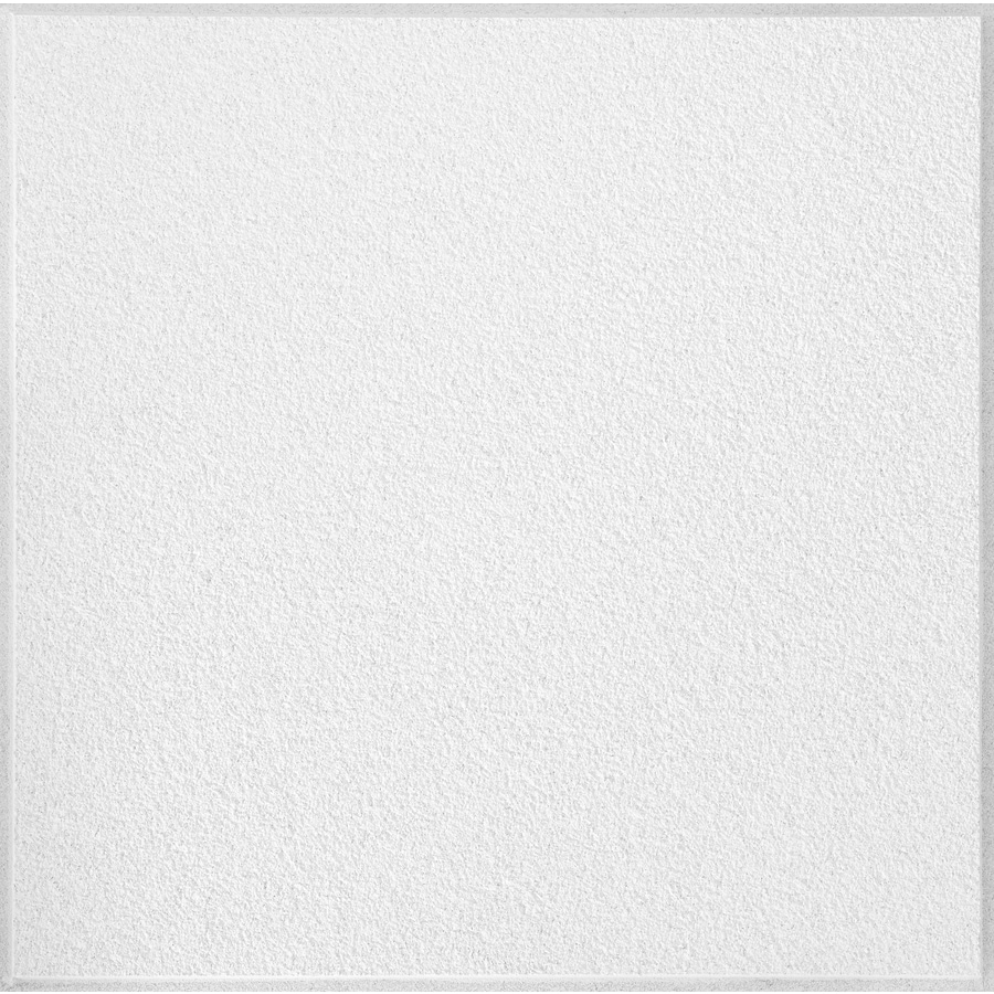 Shop armstrong 24 x 24 white ceiling tile at lowes armstrong 24 x 24 white ceiling tile dailygadgetfo Images