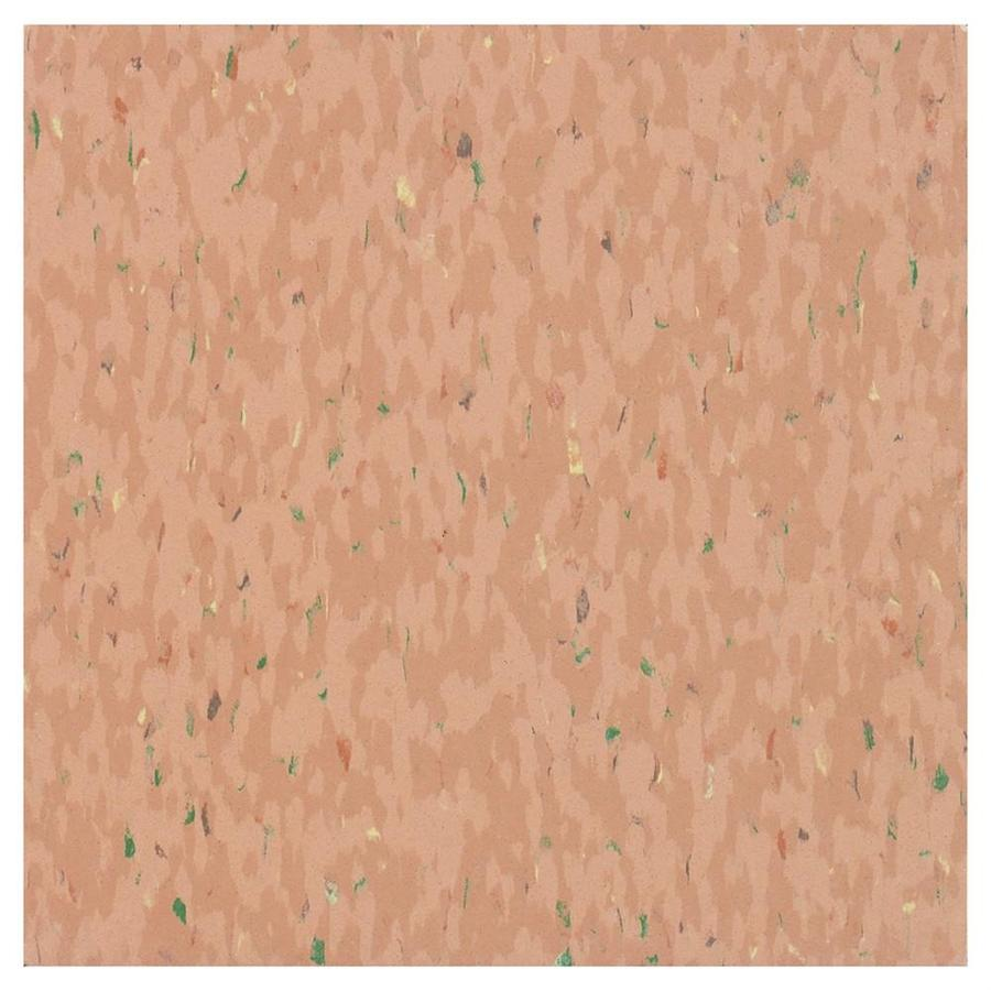 Armstrong Flooring MultiColor 45-Piece 12-in x 12-in Pageant Spice Glue (Adhesive) Chip Commercial VCT Tile