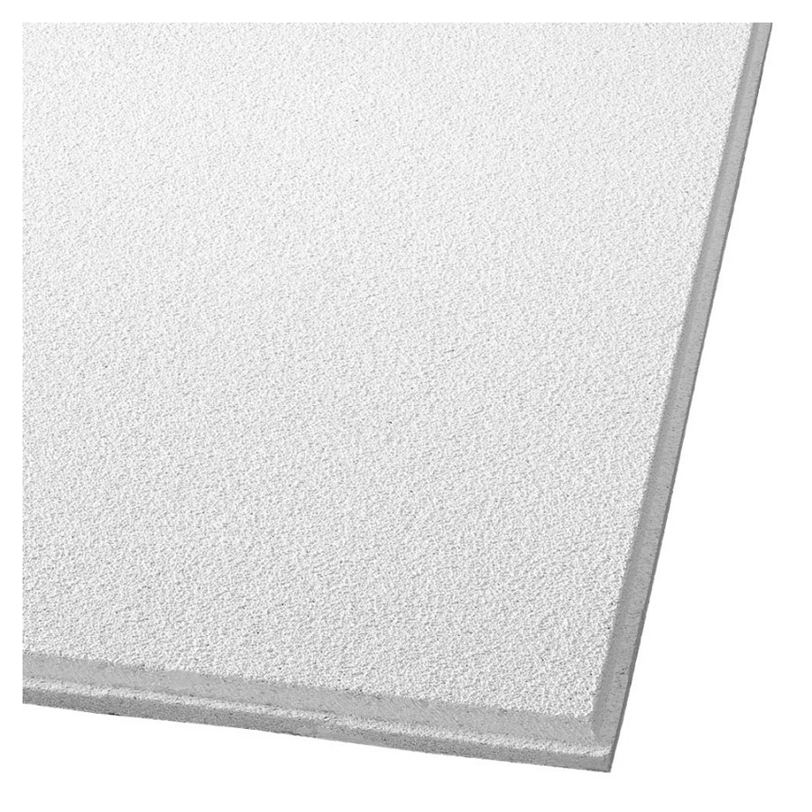 Shop armstrong 24 x 48 dune fine textured ceiling panel at lowes armstrong 24 x 48 dune fine textured ceiling panel dailygadgetfo Choice Image