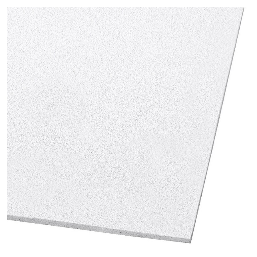 Shop Armstrong 24 X 24 Dune Fine Textured Ceiling Panel At Lowes