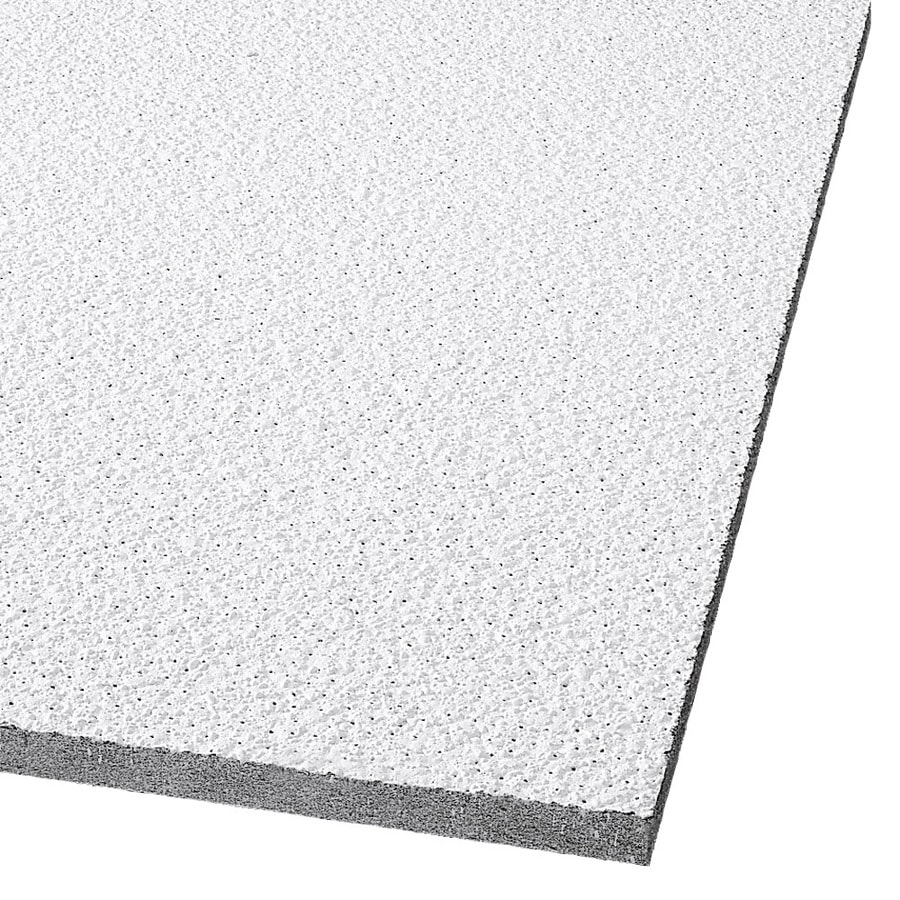 Armstrong Tundra 8-Pack White Textured 15/16-in Drop Acoustic Panel Ceiling Tiles (Common: 48-in x 24-in; Actual: 47.719-in x 23.719-in)