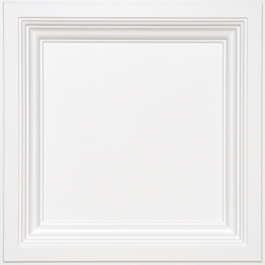Shop armstrong ceilings common 24 in x 24 in actual 2375 in x armstrong ceilings common 24 in x 24 in actual 2375 dailygadgetfo Image collections