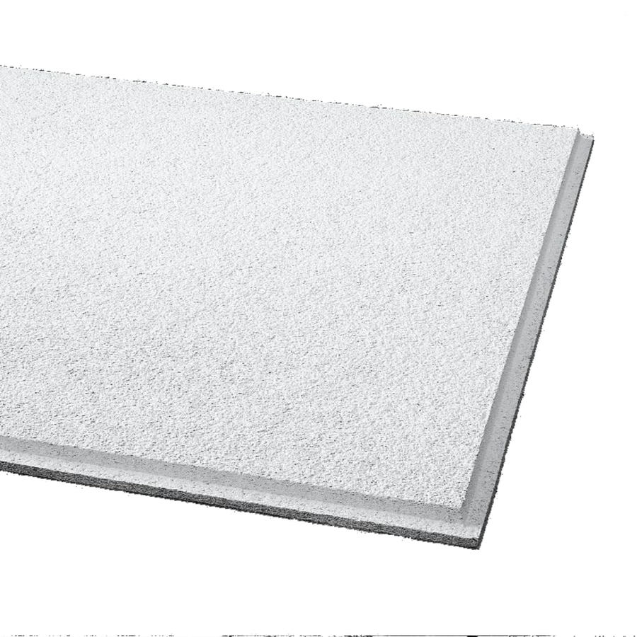 Armstrong 24 X 48 Cirrus Beveled Tegular Ceiling Tile Panel