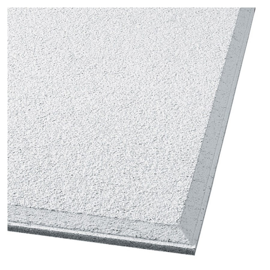 Shop armstrong 24 x 24 cirrus profiles chamfered humiguard plus armstrong 24 x 24 cirrus profiles chamfered humiguard plus beveled tegular ceiling tile panel dailygadgetfo Images