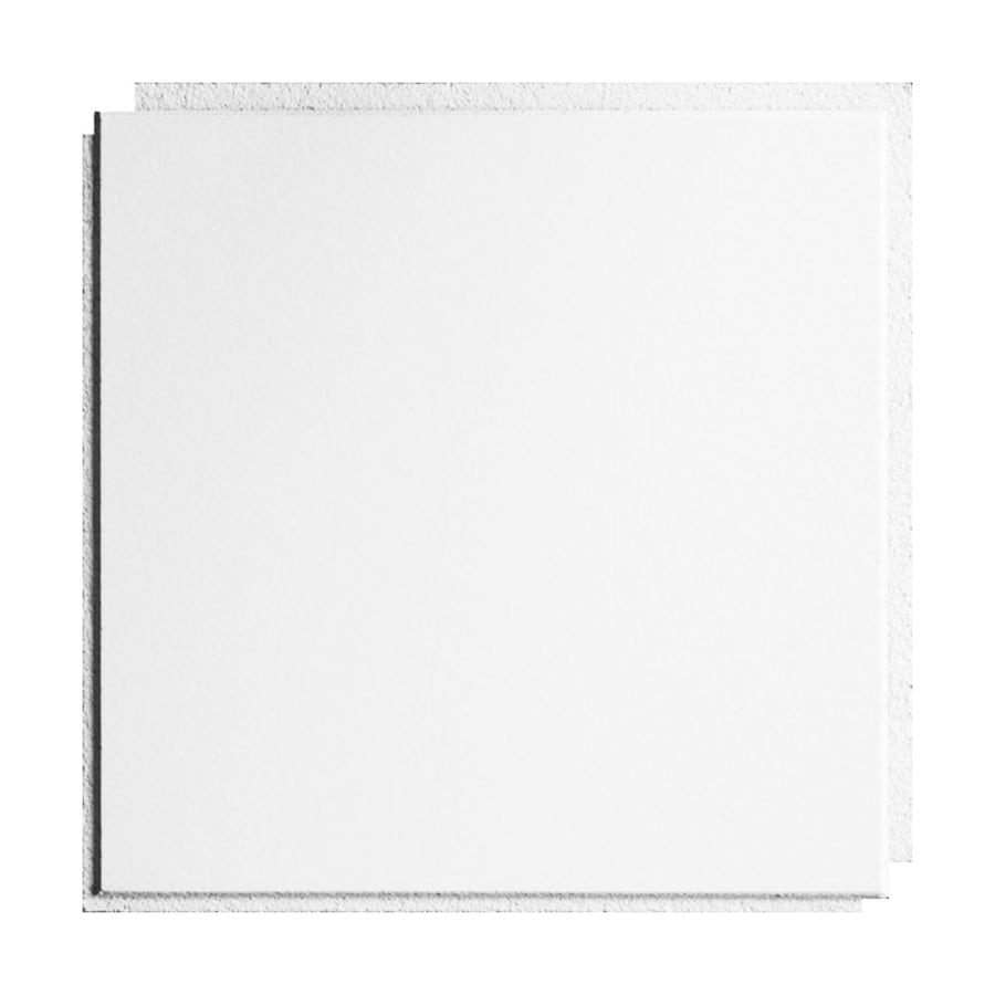 Armstrong Ceilings Washable White 40-Pack White Smooth Surface-Mount Acoustic Ceiling Tiles (Common: 12-in x 12-in; Actual: 11.985-in x 11.985-in)
