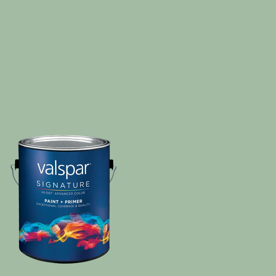 Creative Ideas for Color by Valspar 1-Gallon Interior Matte Eucalyptus Leaf Latex-Base Paint and Primer in One