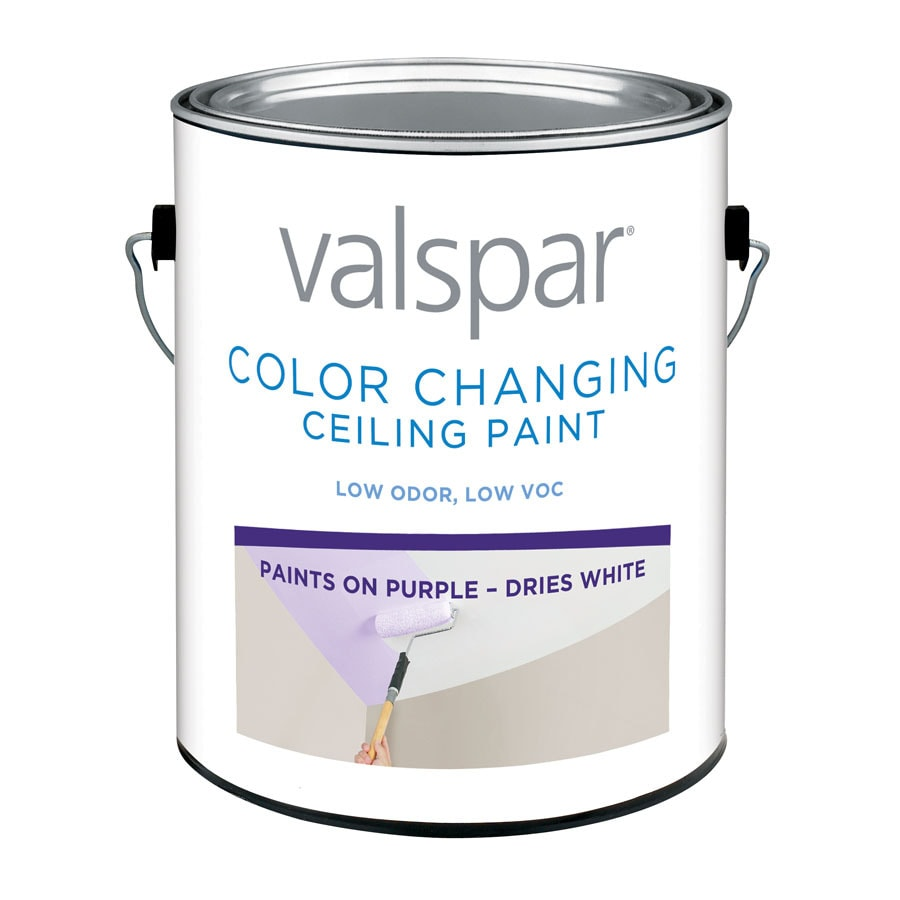 Valspar Ultra Premium White Flat Chalkboard Latex Interior Paint and Primer in One (Actual Net Contents: 128-fl oz)