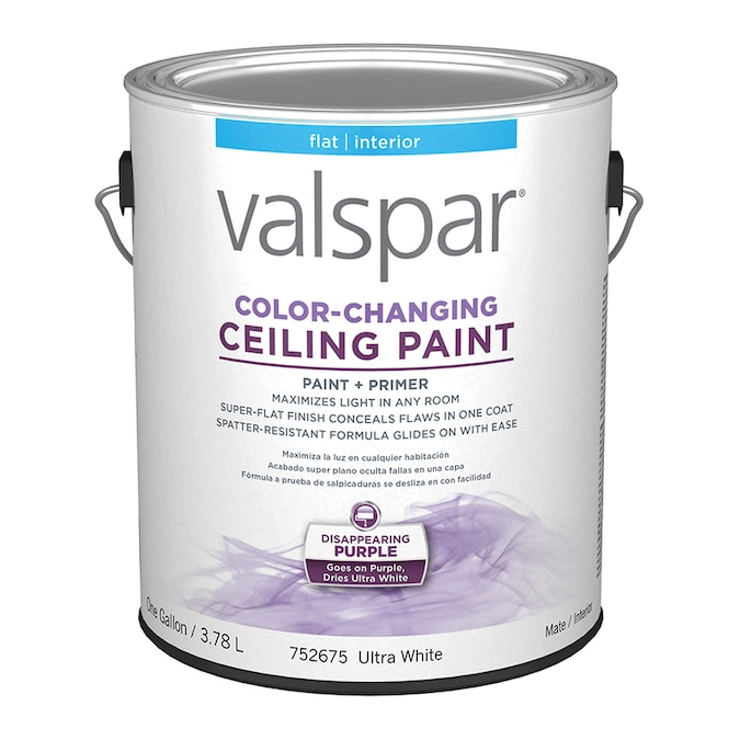 Ceiling Flat Ultra White Interior Paint