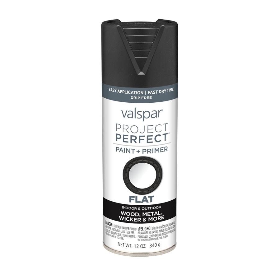 Valspar Project Perfect Black Enamel Spray Paint (Actual Net Contents: 12-oz)