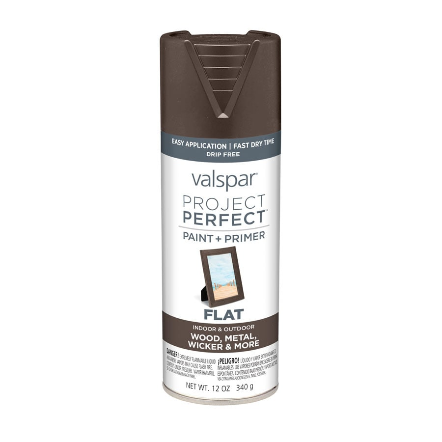 Valspar Project Perfect Labrador Brown Fade Resistant Spray Paint (Actual Net Contents: 12-oz)