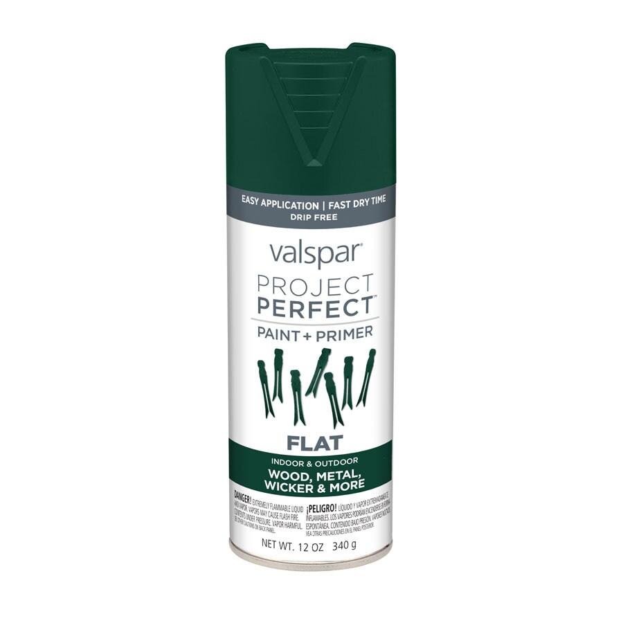 Valspar Project Perfect Hunter Green Enamel Spray Paint (Actual Net Contents: 12-oz)
