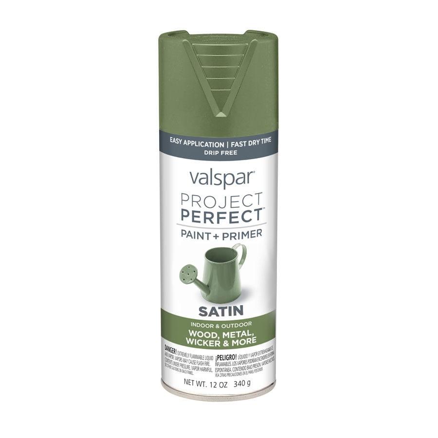 Valspar Project Perfect Leafy Rise Enamel Spray Paint (Actual Net Contents: 12-oz)