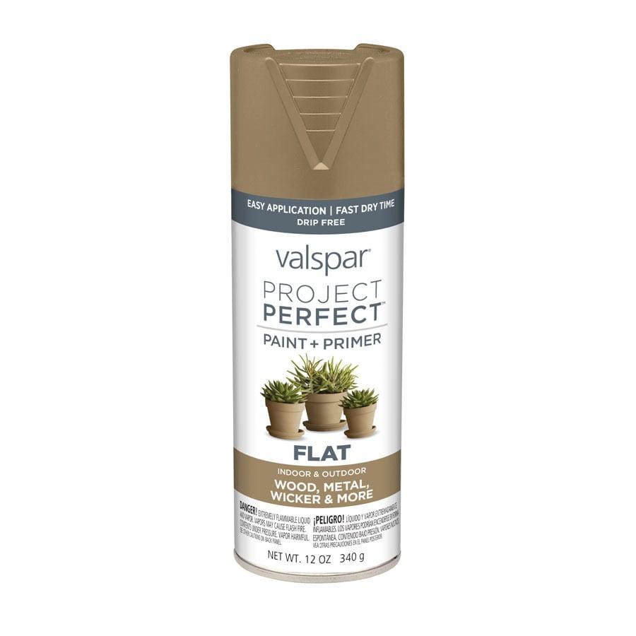 Valspar Project Perfect Rugged Enamel Spray Paint (Actual Net Contents: 12-oz)