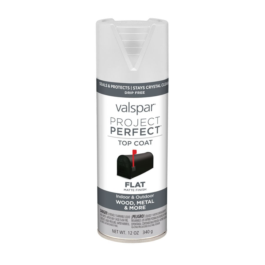 Valspar Project Perfect Clear Fade Resistant Enamel Spray Paint (Actual Net Contents: 12-oz)