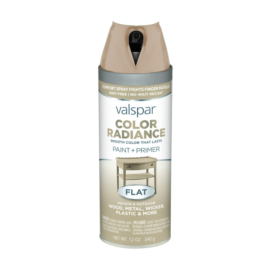 Valspar Color Radiance Woodland Stone Enamel Spray Paint (Actual Net Contents: 12-oz)