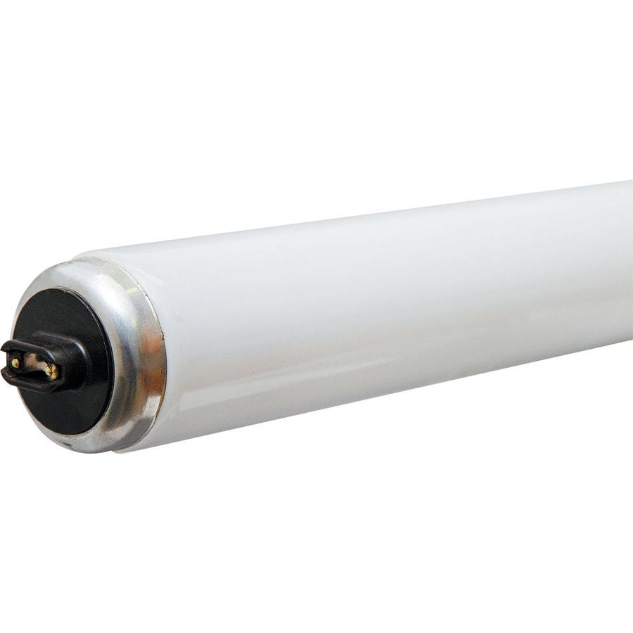 Shop GE 95-Watt T12 8-ft Cool White (4100K) Fluorescent