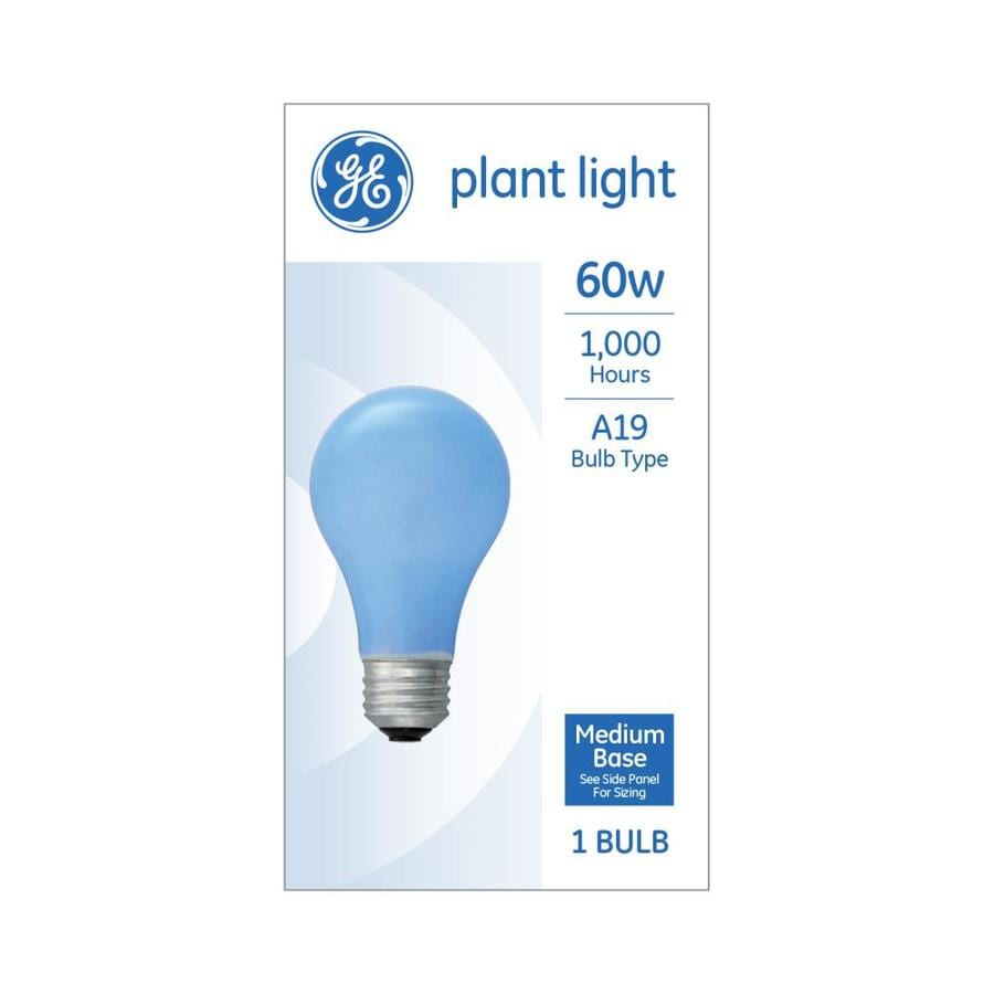 Shop GE 60-Watt Soft White A19 Incandescent Grow Light Bulb at Lowes.com