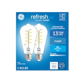 GE Refresh 60-Watt EQ ST19 Daylight Dimmable Edison Light Bulb (2-Pack)