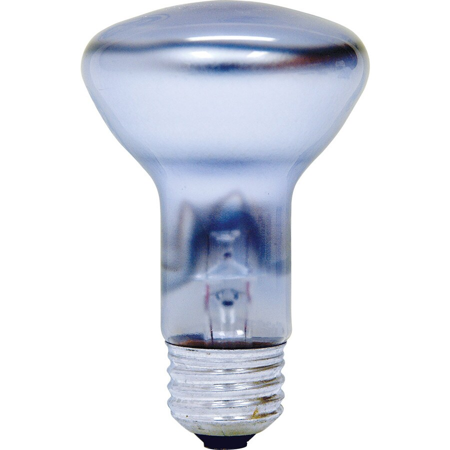 GE Reveal 45W Equivalent Color-Enhancing R20 CFL Flood Light Bulb