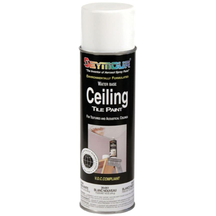 SEYMOUR White Indoor/Outdoor Spray Paint