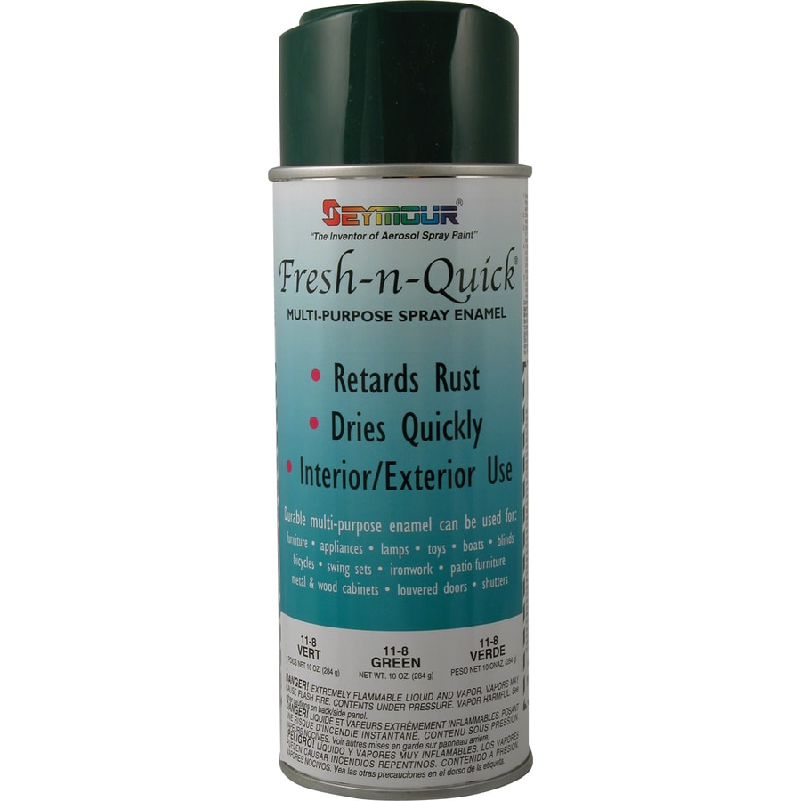 Shop Seymour Green Indoor Outdoor Spray Paint At