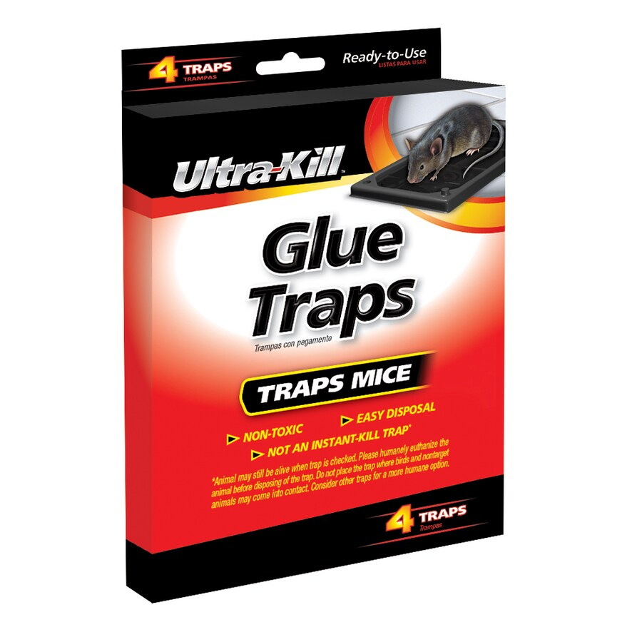 Ultra-Kill 4-Count Mouse Glue Trap At Lowes.com