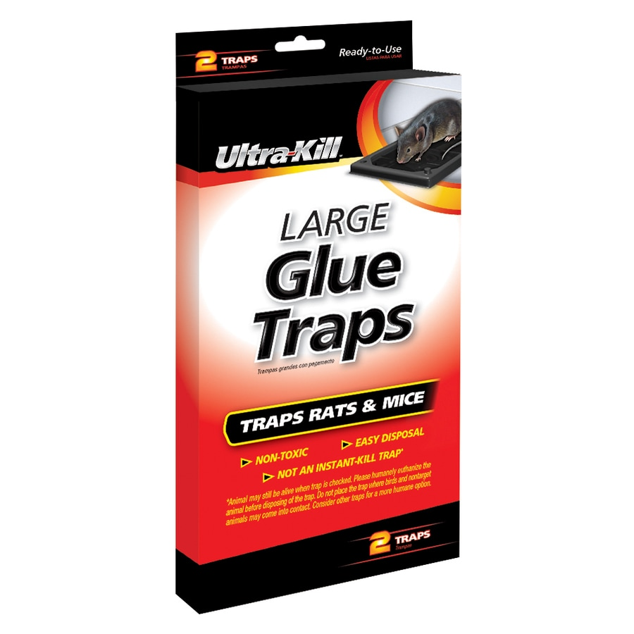 Ultra-Kill 2-Count Rat And Mouse Glue Trap At Lowes.com
