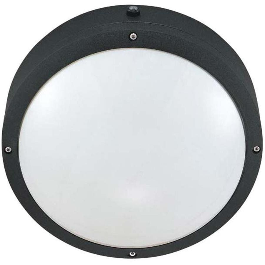 13.97-in H Matte Black Outdoor Wall Light