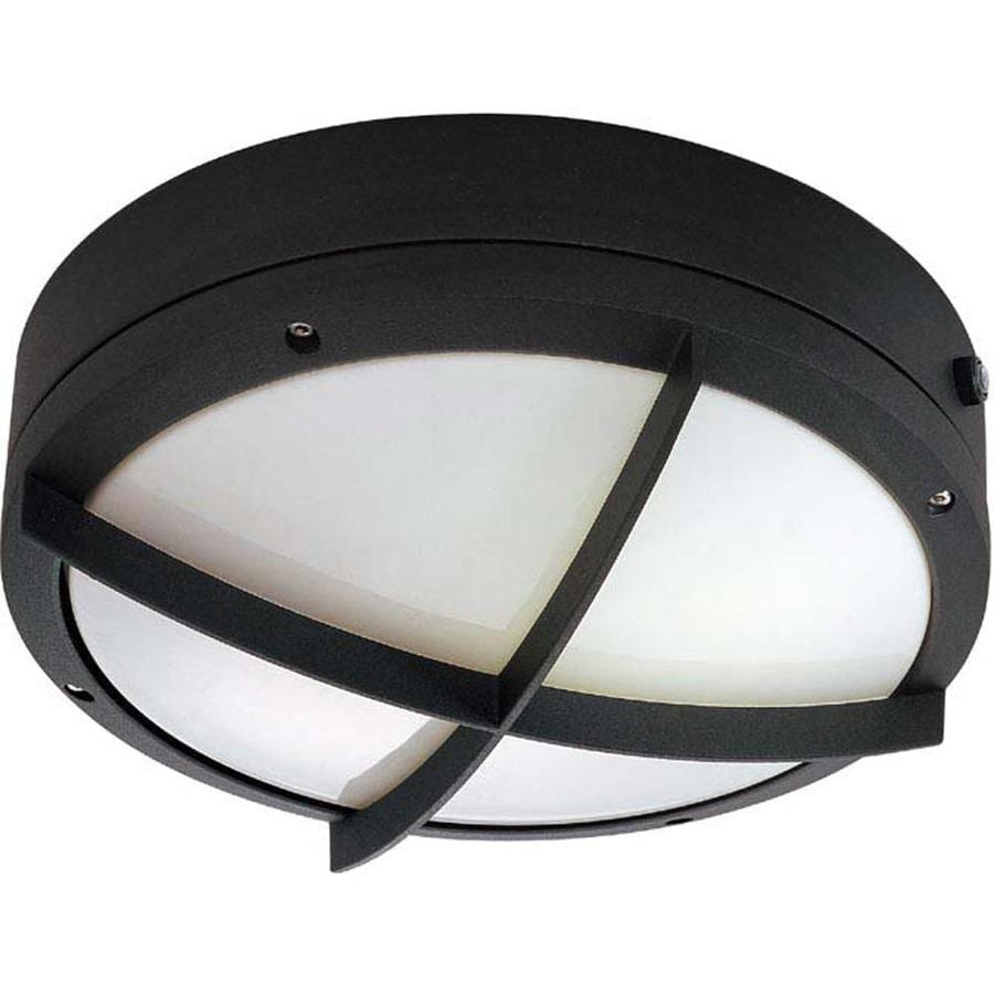 16.17-in H Matte Black Outdoor Wall Light