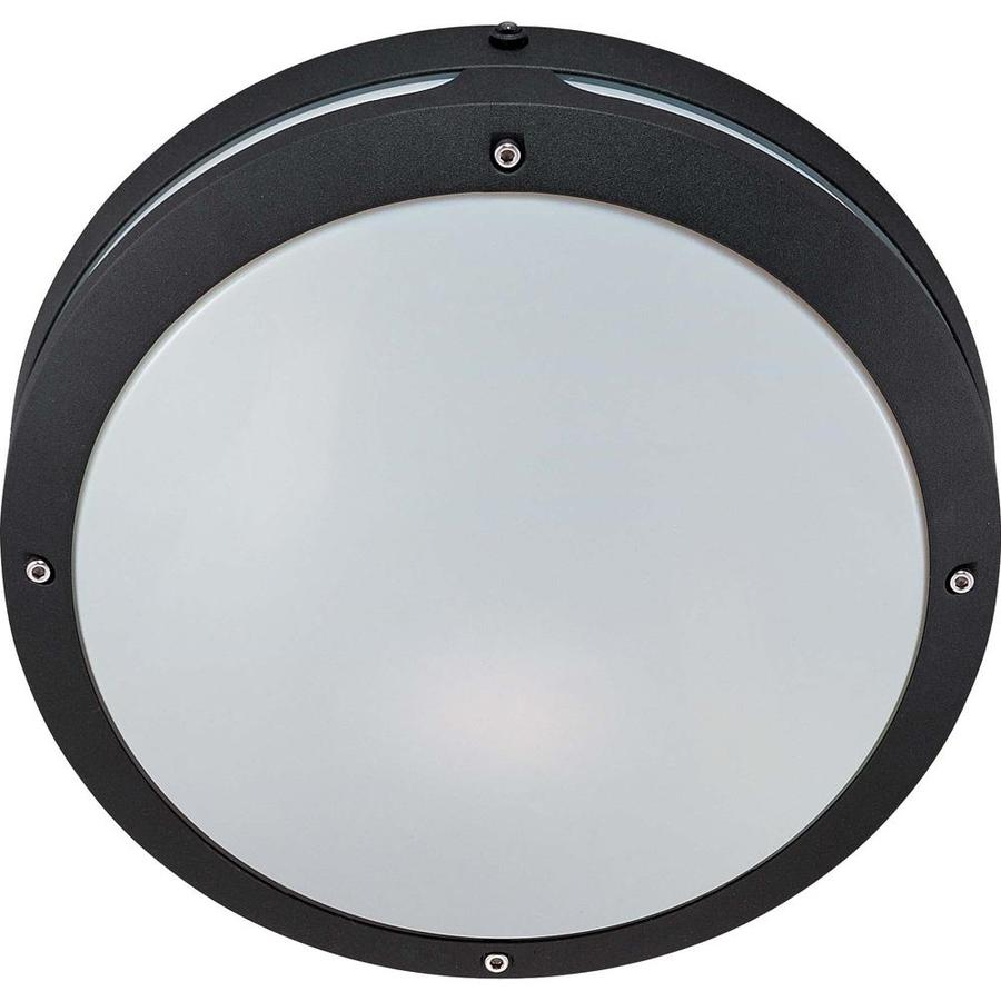 10.78-in H Matte Black Outdoor Wall Light