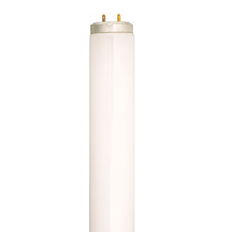 SYLVANIA 30-Pack 39-Watt 4100K Cool White Linear Fluorescent Tube Light Bulbs (Common: 48-in; Actual: 46.00-in)
