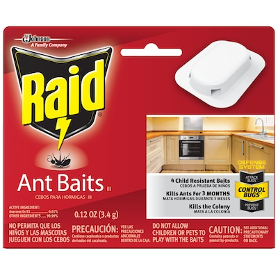 Raid 8-Count 8 Count Ant Bait Station at Lowes com