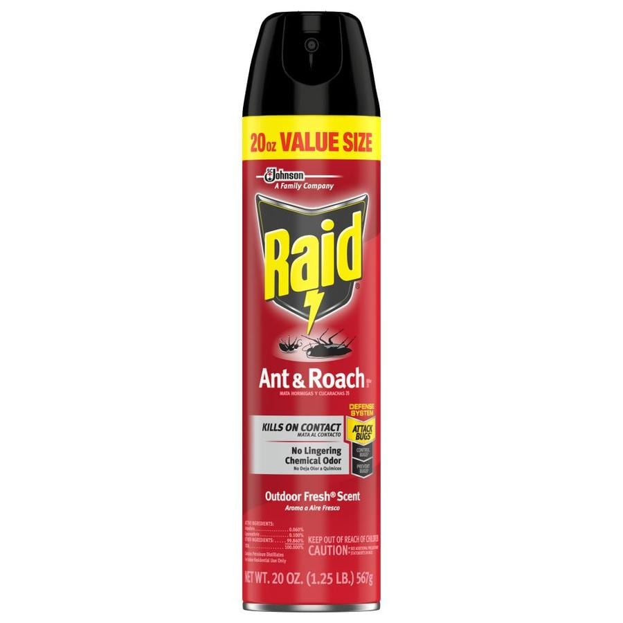 Raid Ant & Roach 20-oz Insect Killer