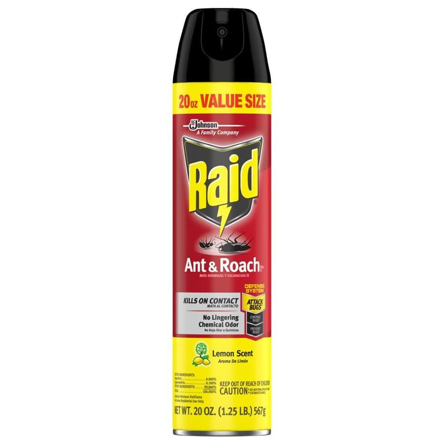 Raid Ant and Roach 20-oz Insect Killer