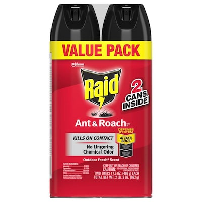 Raid Ant and Roach 2-Count 20-oz Ant Killer at Lowes com