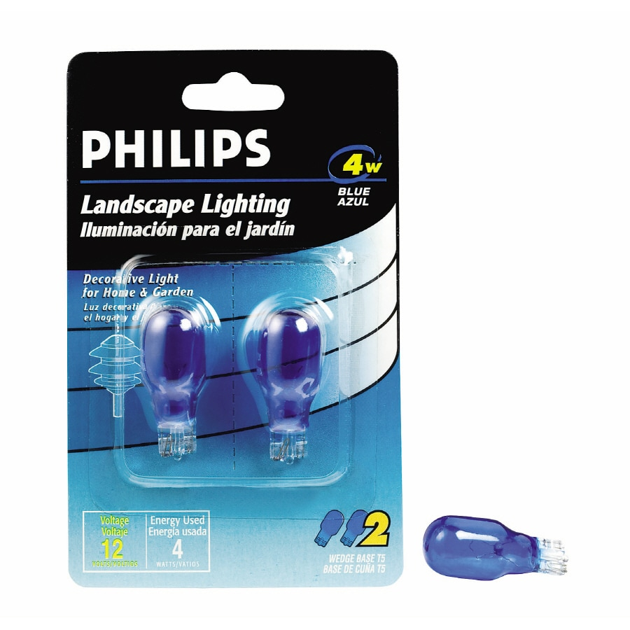 Philips 2-Pack Incandescent Decorative Light Bulbs