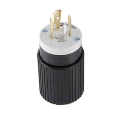 30-Amp-Volt Black/White 4-Wire Grounding Plug on