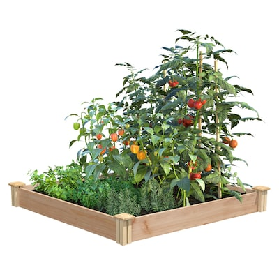 Miracle-Gro 48-in W x 48-in L x 5.5-in H Unfisnished/Natural Cedar Raised Garden Bed