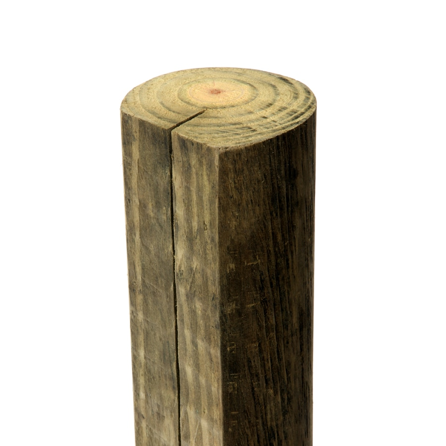 Shop severe weather pressure treated wood pine fence post actual severe weather pressure treated wood pine fence post actual 3375 in x 3375 baanklon Image collections