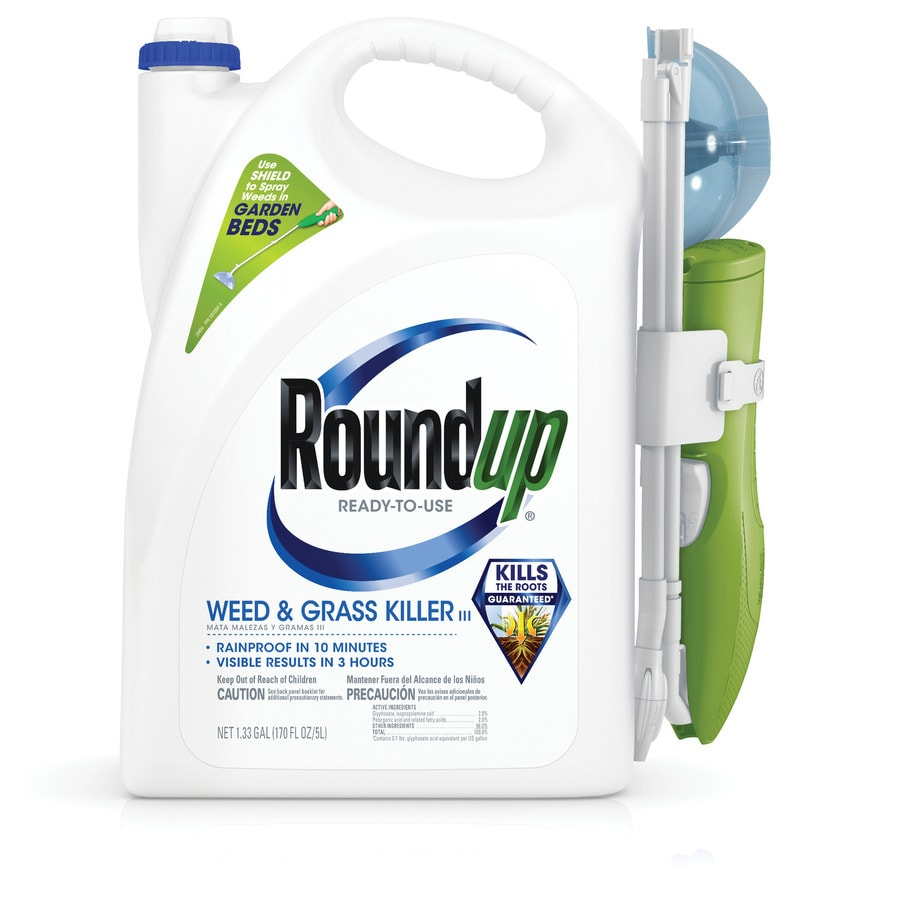 Kill weeds in flower beds - Roundup 1 Gallon Weed And Grass Killer