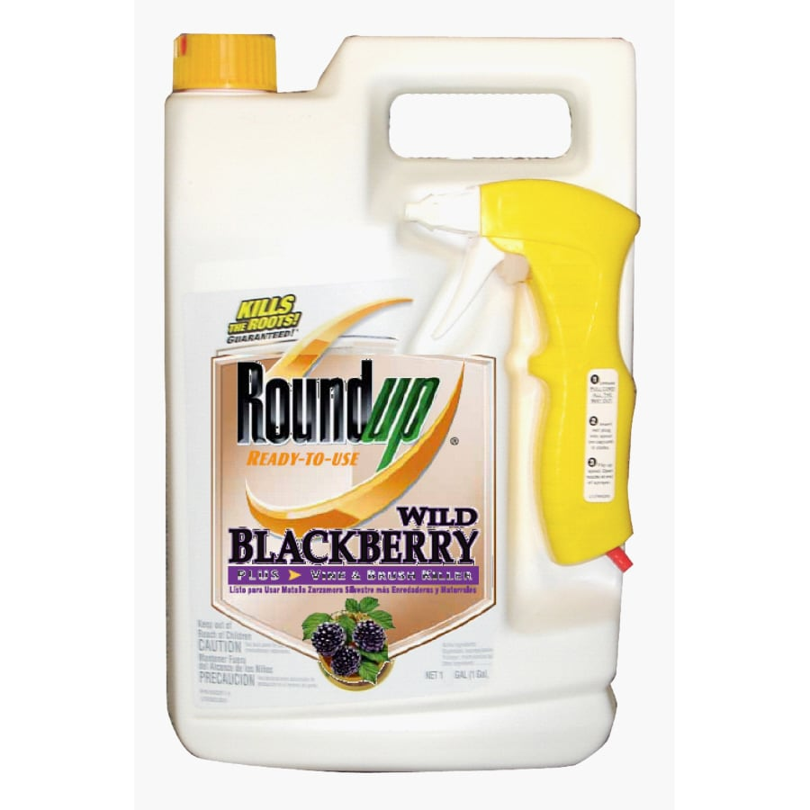 Roundup 170-oz Roundup Ready-To-Use Wild Blackberry Plus Vine & Brush Killer