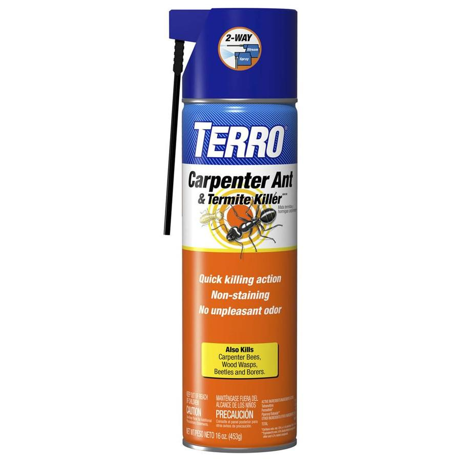 TERRO 16-oz Carpenter Bee, Ant, and Termite Killer