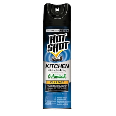 Hot Shot Kitchen Bug 14-oz Insect Killer at Lowes com