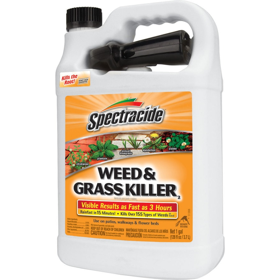 Spectracide 128-fl oz Weed and Grass Killer Ready-To-Use