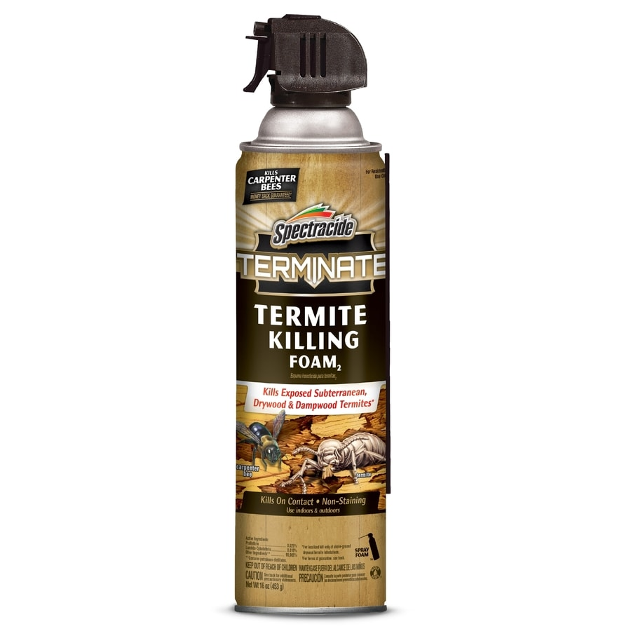 Shop Spectracide Terminate 16 Oz Termite Killing Foam At