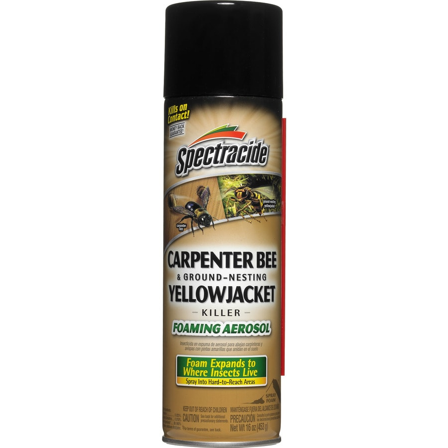 Spectracide Carpenter Bee & Ground-Nesting Yellowjacket 16-oz Insect Killer