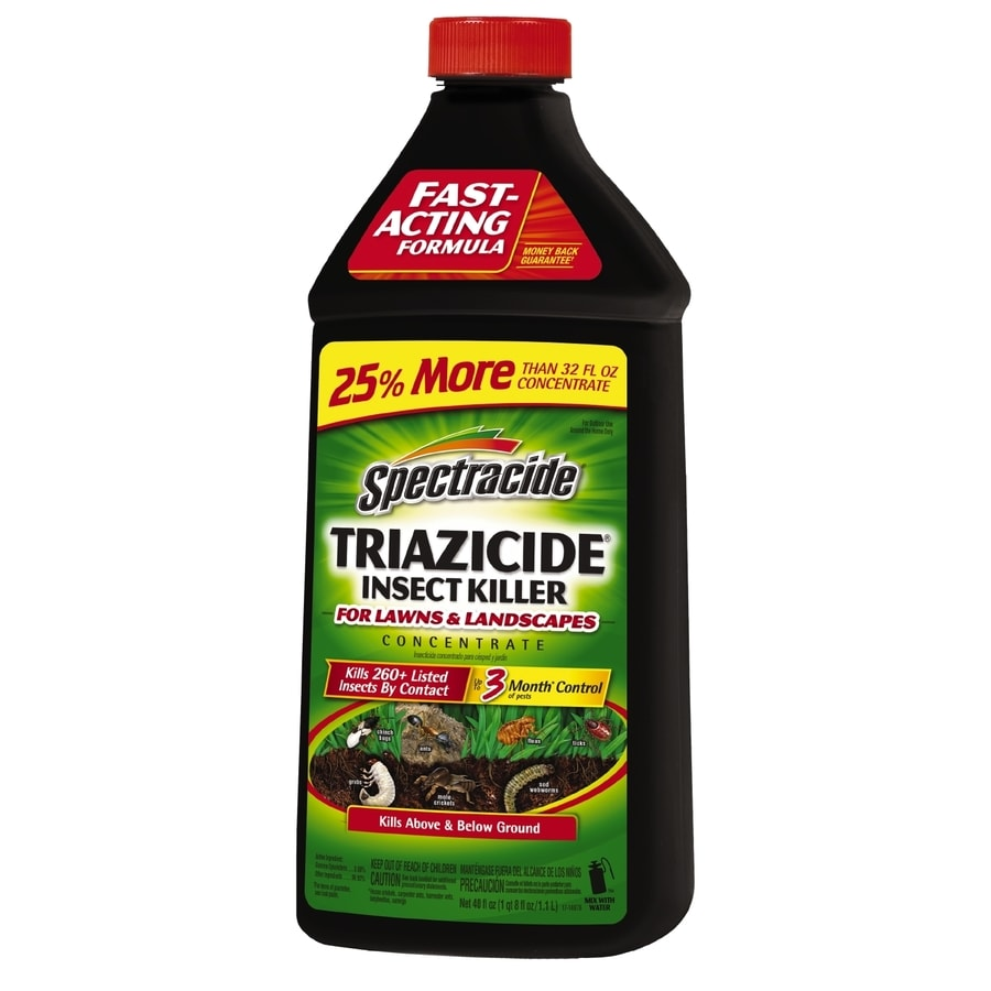 Spectracide Triazicide For Lawns and Landscapes 40-fl oz Concentrate